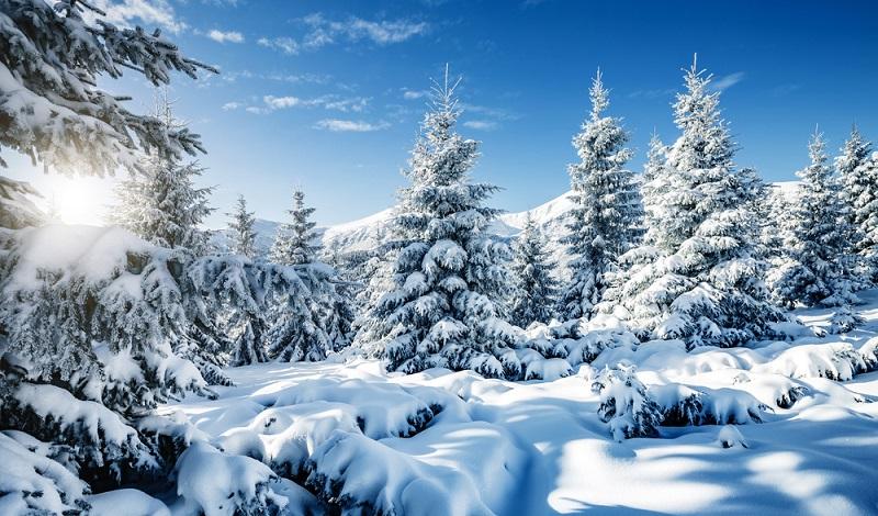 Solche traumhaften Winterbilder findet man nicht jeden Tag in der Auvergne, umso wertvoller sind sie. (#1)
