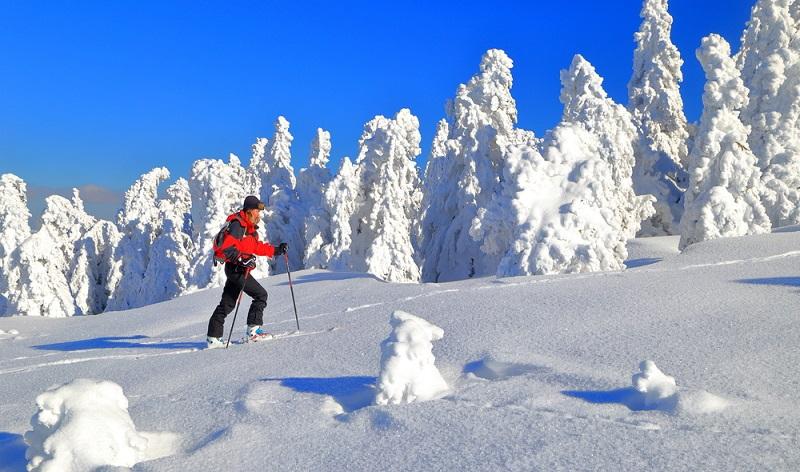 Beachten Sie bei Pistentouren bitte, dass die Pisten vor allem für Skifahrer gedacht sind. (Fotolizenz-Shutterstock: INU)